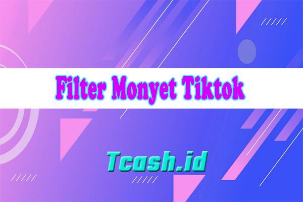 Filter Monyet Tiktok